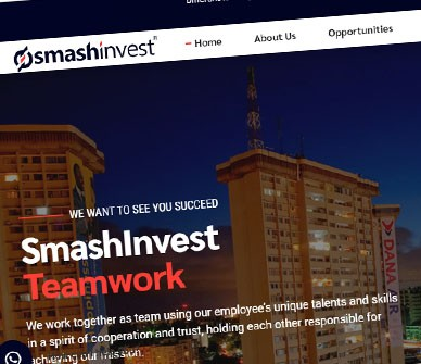 Website Design for SmashInvest